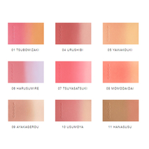 Suqqu Pure Color Blush румяна